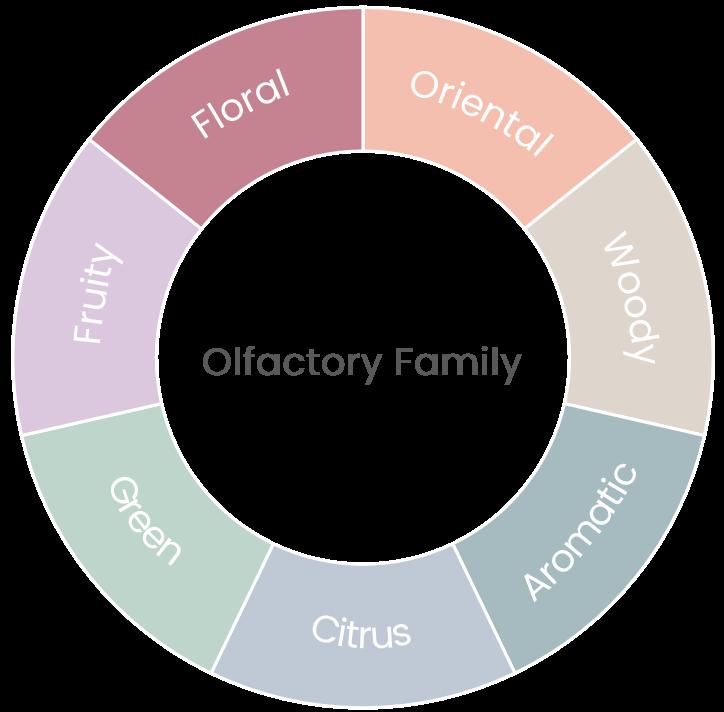 Aromatic wheel